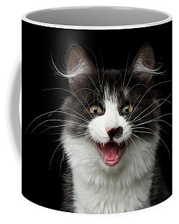 Meow Of Siberian Kitten Coffee Mug