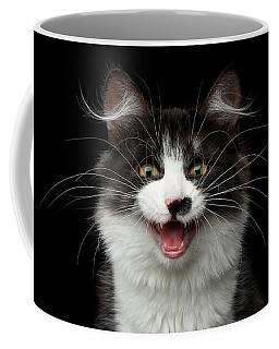 Meow Of Siberian Kitten Coffee Mug by Sergey Taran