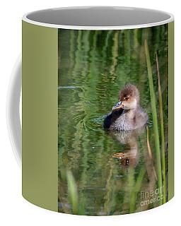 Merganser Duckling Coffee Mug by Amy Porter