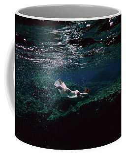Mermaid Route Coffee Mug
