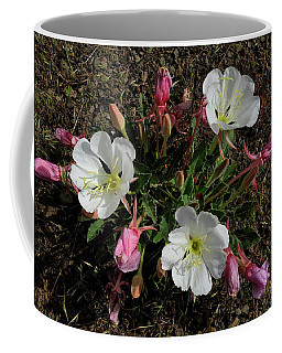 Mesa Blooms Coffee Mug