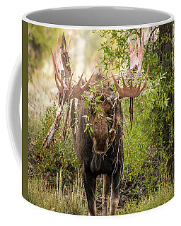 Coffee Mug featuring the photograph Messy Moose by Mary Hone