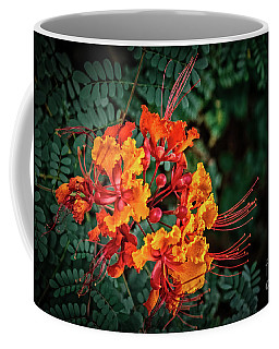 Mexican Bird Of Paradise Coffee Mug by Robert Bales
