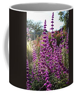 Coffee Mug featuring the photograph Mexican Sage by Alison Frank