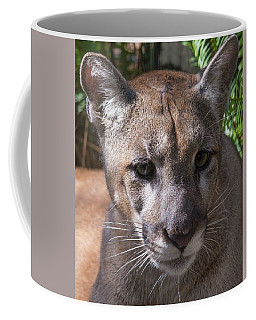 Coffee Mug featuring the photograph Micanopy by John Black