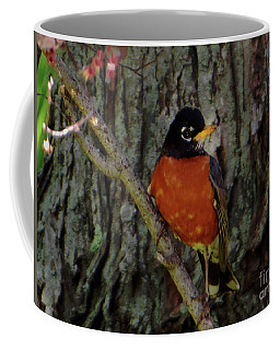 Michigan State Bird Robin Coffee Mug