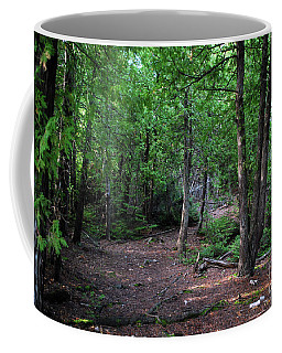 Coffee Mug featuring the photograph Michigan Woods by Gary Wonning