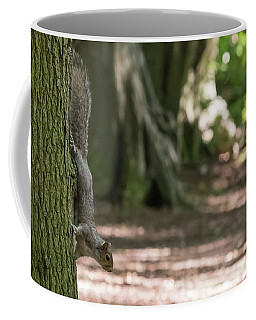 Mid-descent Coffee Mug