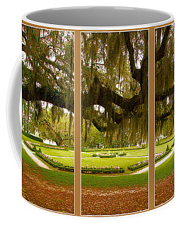 Coffee Mug featuring the photograph Middleton Gardens Triptych by Bill Barber
