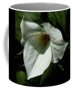 Midnight In The Garden Coffee Mug
