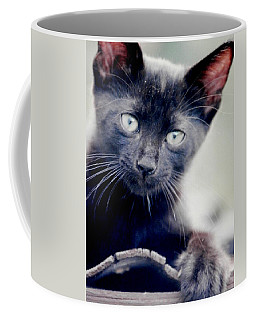 Midnight Sharpening Claws Coffee Mug