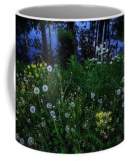 Midsummer Night's Magic Coffee Mug