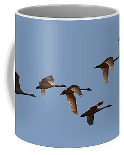 Migrating Swans Coffee Mug