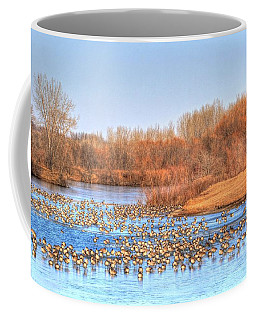 Migration Break On Ice Coffee Mug