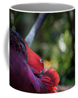 Miksang 4 Parrot Coffee Mug by Theresa Tahara