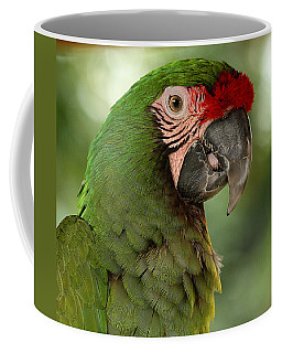 Military Macaw Coffee Mug