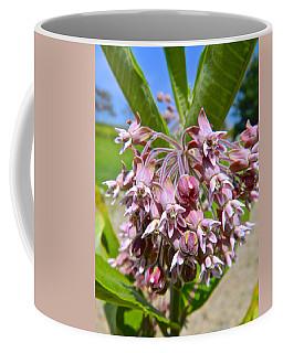 Milkweed Beauty Coffee Mug