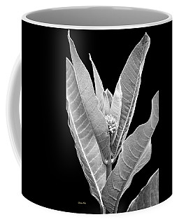 Coffee Mug featuring the photograph Milkweed Black And White by Christina Rollo