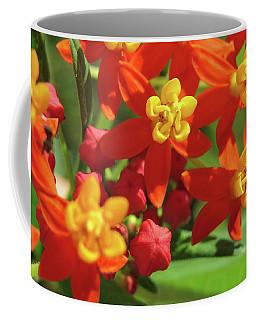 Milkweed Flowers Coffee Mug