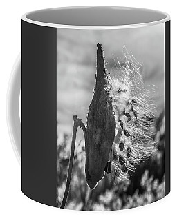 Milkweed Pod Back Lit B And W Coffee Mug