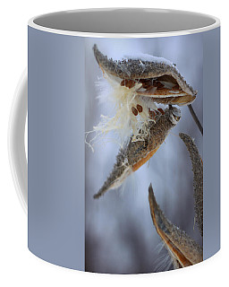 Coffee Mug featuring the photograph Milkweed by Viviana  Nadowski