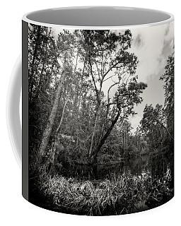 Milltail Creek 2 Coffee Mug