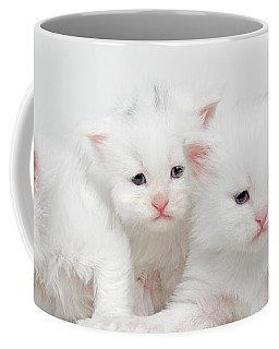 Milky Collection Coffee Mug