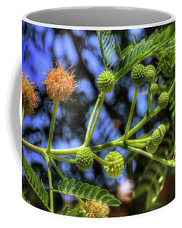 Mimosa Flower Cluster Coffee Mug