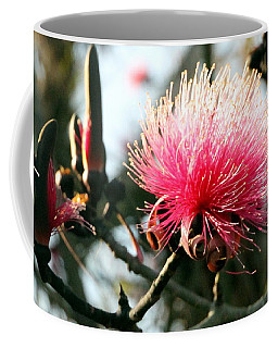 Mimosa In Bloom Coffee Mug