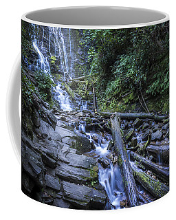 Mingo Falls One Coffee Mug