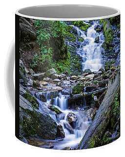 Mingo Falls Two Coffee Mug