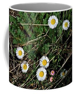 Mini Daisies Coffee Mug
