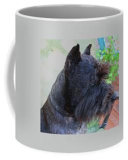 Miniature Schnauzer Sitting On The Deck Coffee Mug