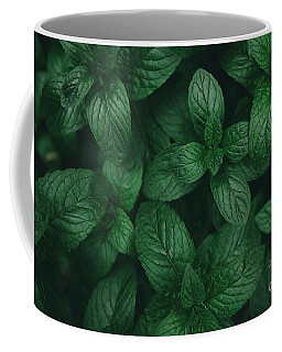 Mint Green Leaves Pattern Background Coffee Mug