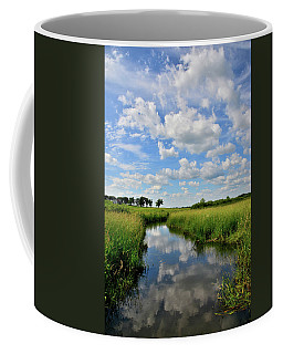 Mirror Image Of Clouds In Glacial Park Wetland Coffee Mug
