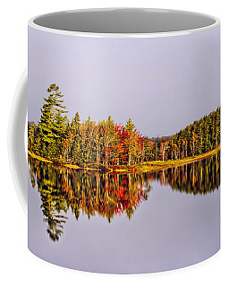 Mirror Of Beauty Coffee Mug
