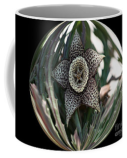 Captured Five-point Star Succulent Coffee Mug