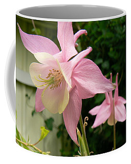 Coffee Mug featuring the photograph Mirrored Image by Pamela Patch
