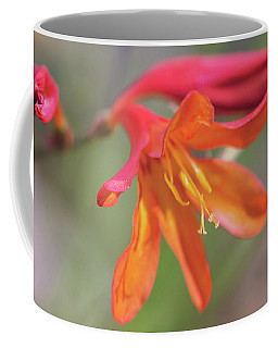 Coffee Mug featuring the photograph Misplaced Beauty by Linda Lees