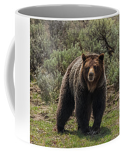 Miss Personality Coffee Mug by Yeates Photography