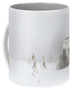 Miss Snowy Owl And Her Snowflakes Coffee Mug