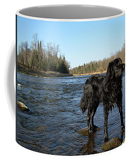 Coffee Mug featuring the photograph Mississippi River Dog On The Rocks by Kent Lorentzen