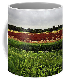 Missouri - Hwy 36 Coffee Mug by David Pantuso