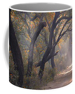 Misty Morning, Bharatpur, 2005 Coffee Mug