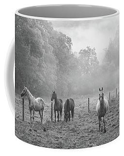 Misty Morning Horses Coffee Mug