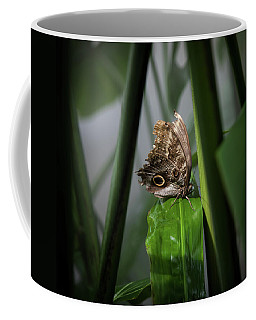 Coffee Mug featuring the photograph Misty Morning Owl by Karen Wiles