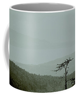 Misty View Coffee Mug