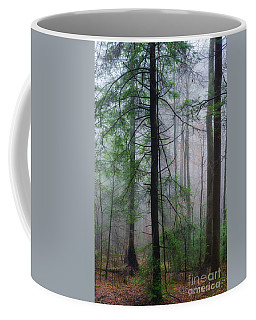 Coffee Mug featuring the photograph Misty Winter Forest by Thomas R Fletcher