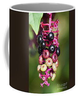 Mixed Berries On Branch Coffee Mug