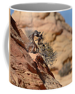 Miyagi Coffee Mug